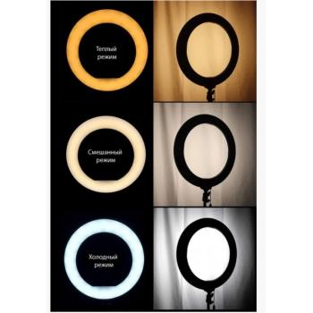 Кольцевая LED лампа (1 крепл.тел) (пульт) 220V (36см)