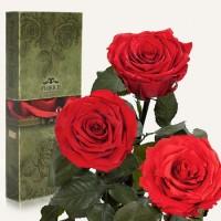 Долгосвежие розы.Необычный подарок